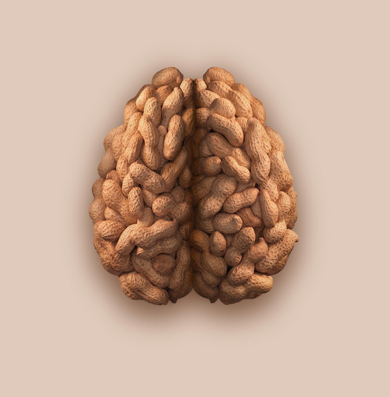 Peanut-Brain