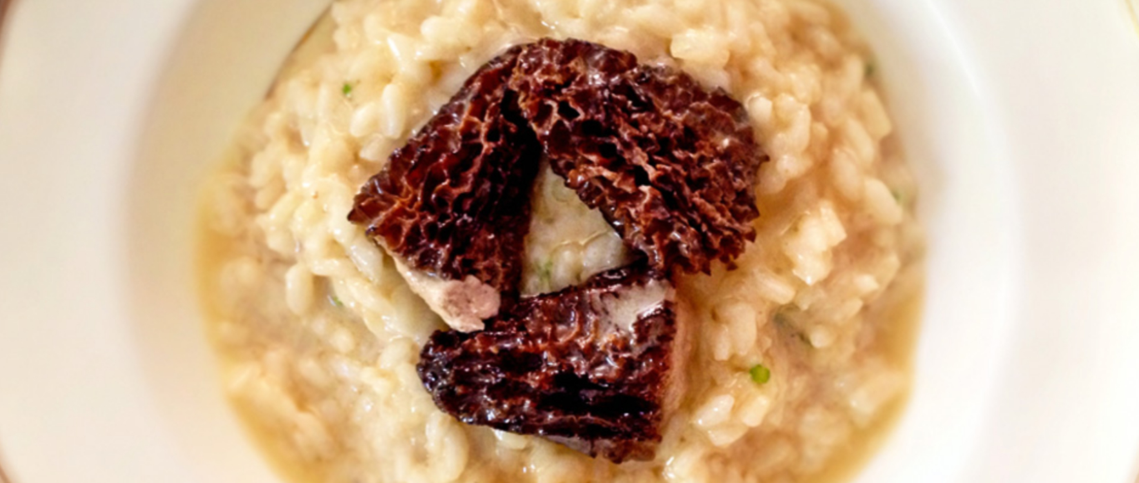 Morel Risotto with Citrus Butter and Chicken Mousse.