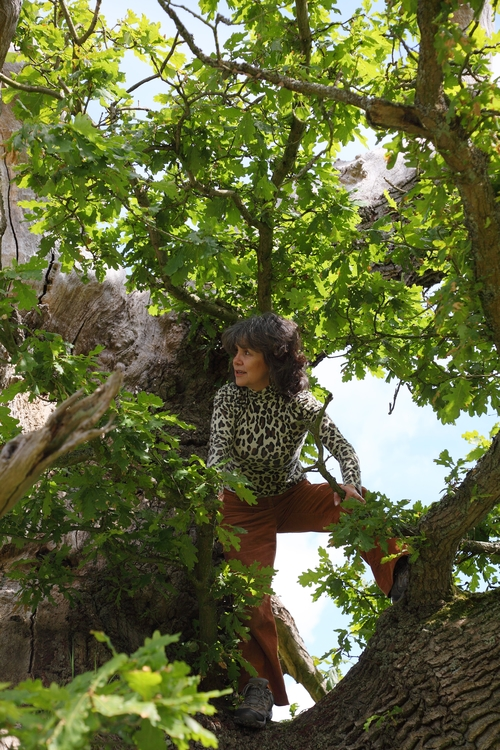 Marina Chapman in a tree | Photo by John D. Chapman | Courtesy of Marina Chapman.