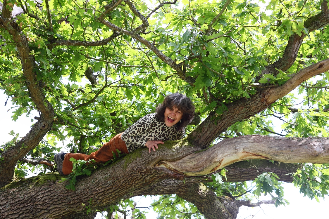 Marina in a tree | Photo by John D. Chapman | Courtesy of Marina Chapman.