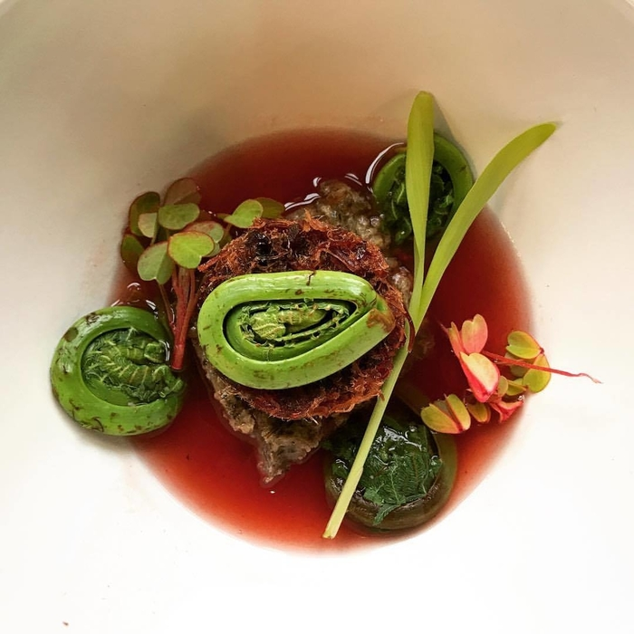 Blossom Moon Second course: Smoked Turkey Cranberry Pemmican Soup • Wild Rice Cake • Fiddlehead Fern • Popcorn Shoot • Sorrel • Cranberry Wojapi Broth
